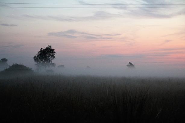 the-fog-2644411_960_720